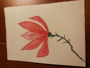 Ex. Magnolia.jpg