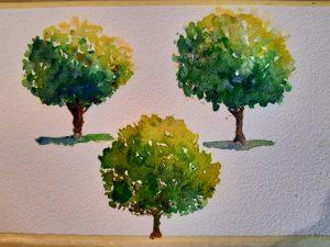 arbres_1.jpg
