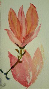 module trois magnolia glacis._20210210_211300.jpg