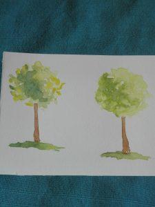 m4 arbre 1.jpg